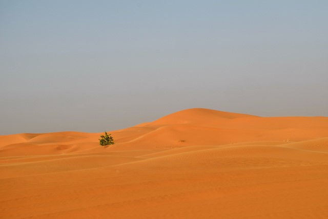 The sand dunes of Erg Chebbi.