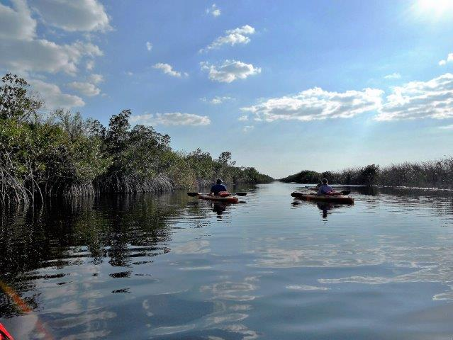 kayak the Everglades