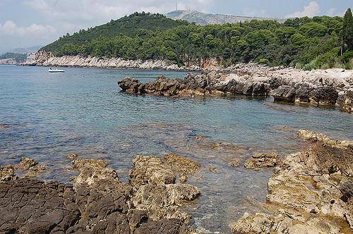 Lokrum Island, Croatia. (Photo courtesy Yusuke Kawasaki.)