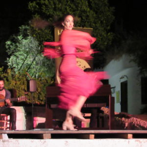 flamenco experience in grenada Carolina Morales Pinilla in Romance de Agua y Piedra at the Museo de las Cuevas