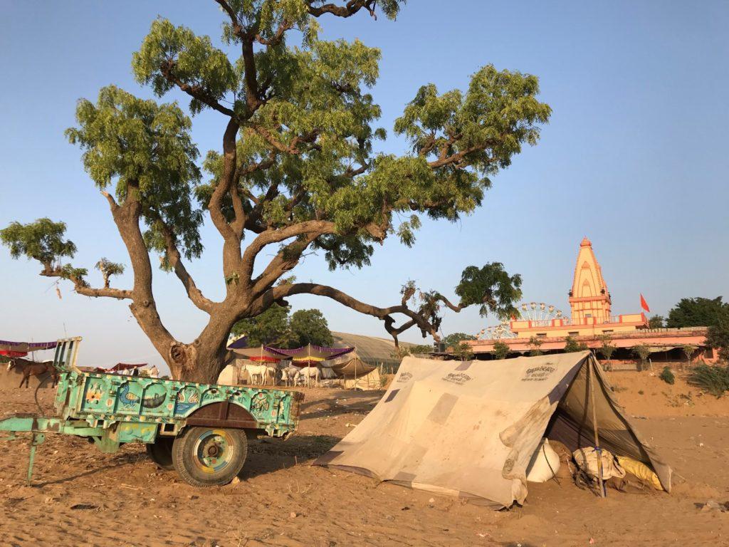 visting Pushkar Camel Fair