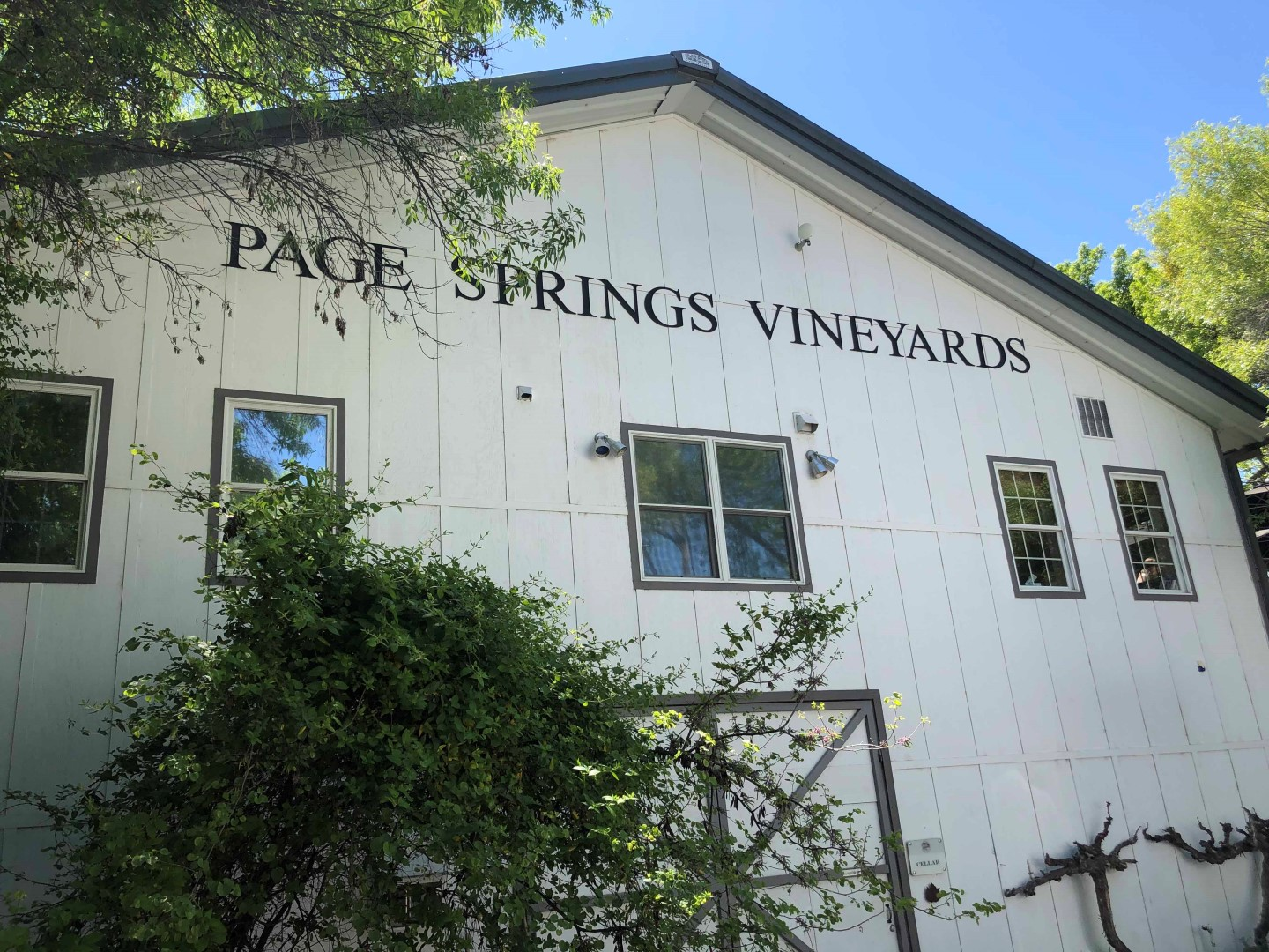 Page Springs Vineyards (Photo by Sarah Cribari )