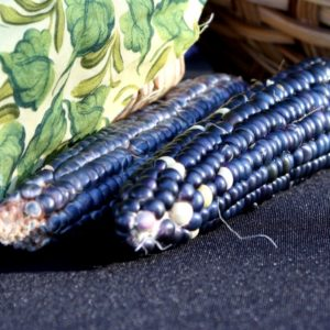 New Mexican cuisine Sharon Kurtz black corn