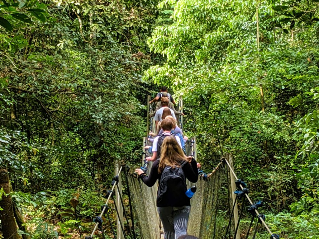 Amazon eco-lodge suspension bridge