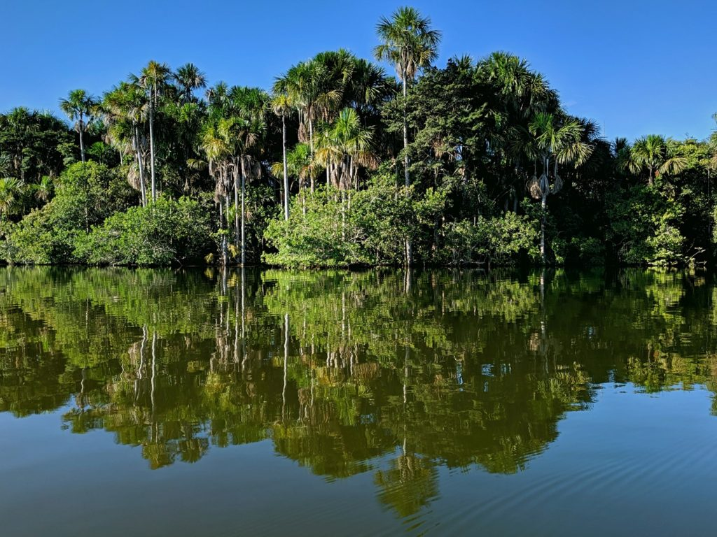 Lake Sandoval reflection amazon eco lodge