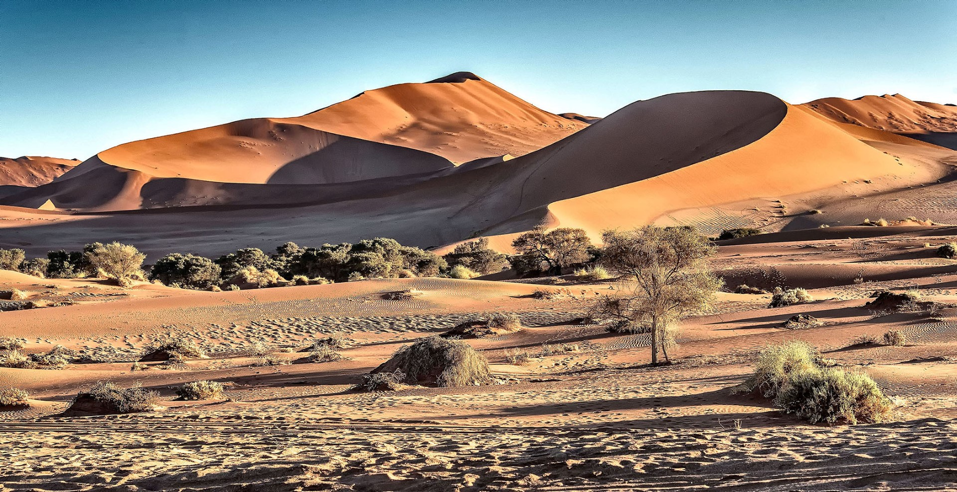 Sossusvlei Dunes in stunning Namibia Adrianne Brockman