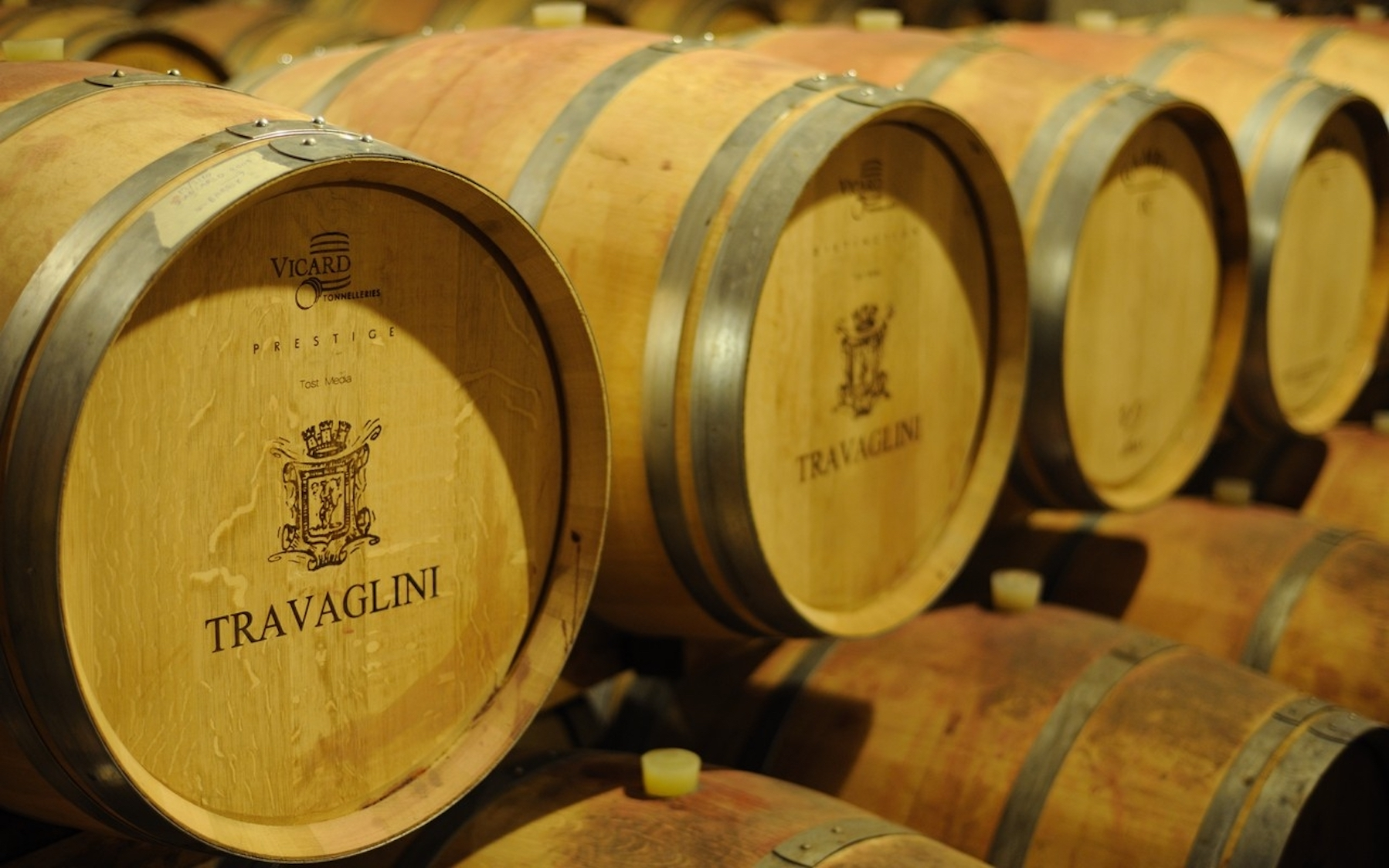 Travaglini Estate Wines brariques wine barrels