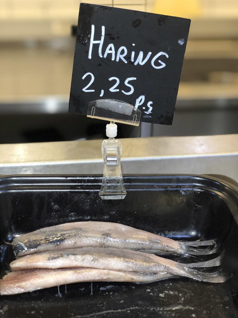 haring herring