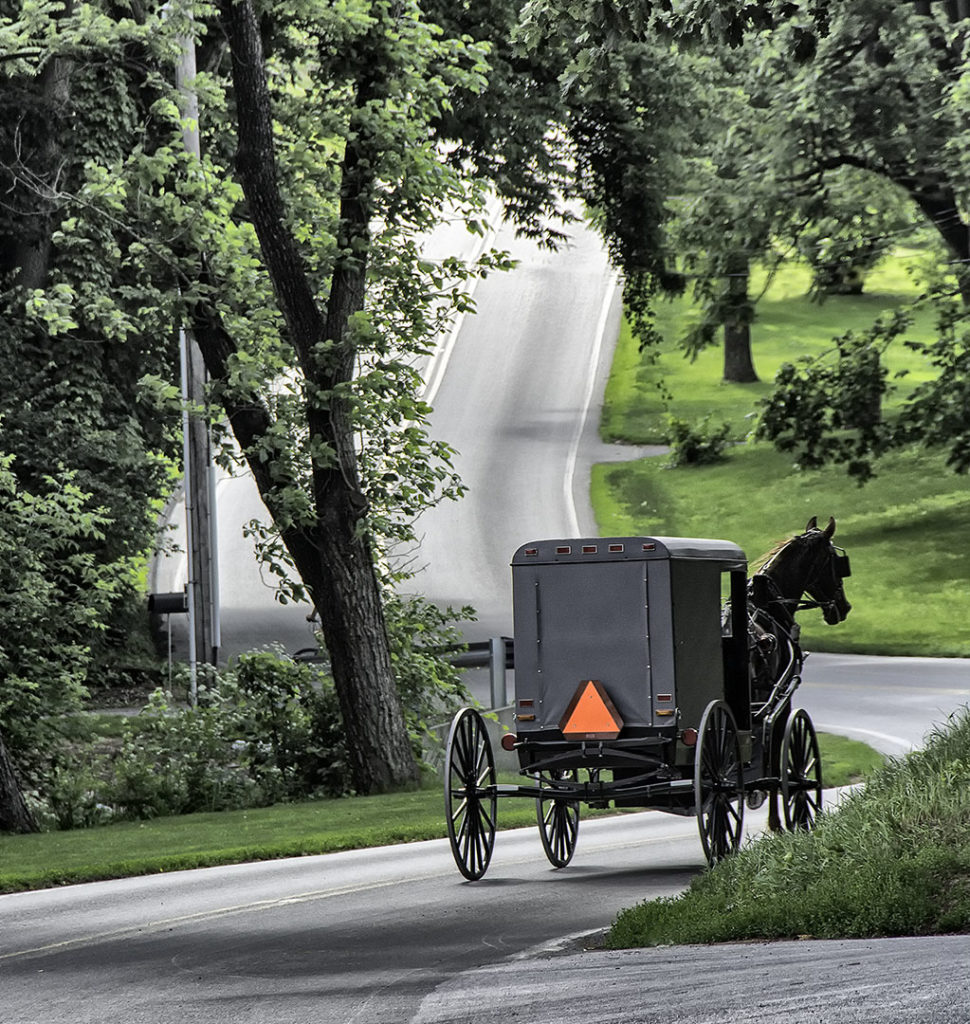Amish horse and buggy (Photo by Adrianne Brockman)