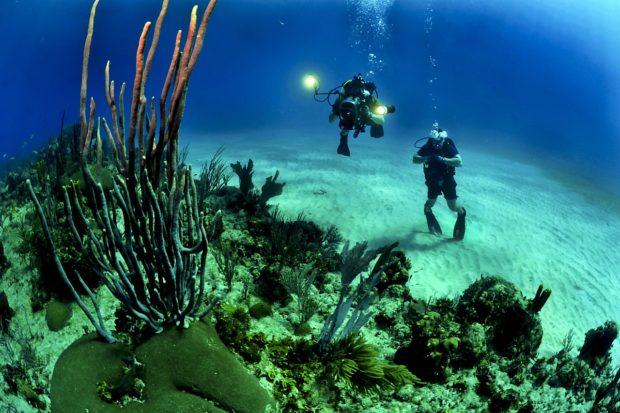 life lessons scuba diving