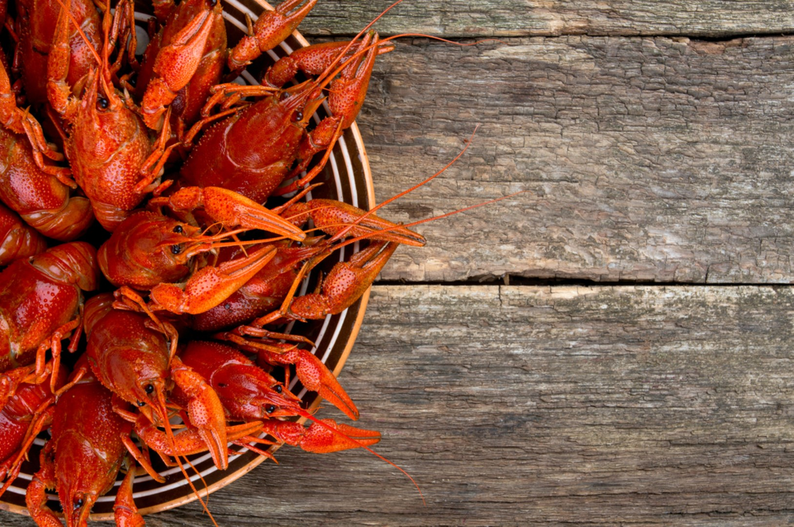 cities for seafood lovers crawfish