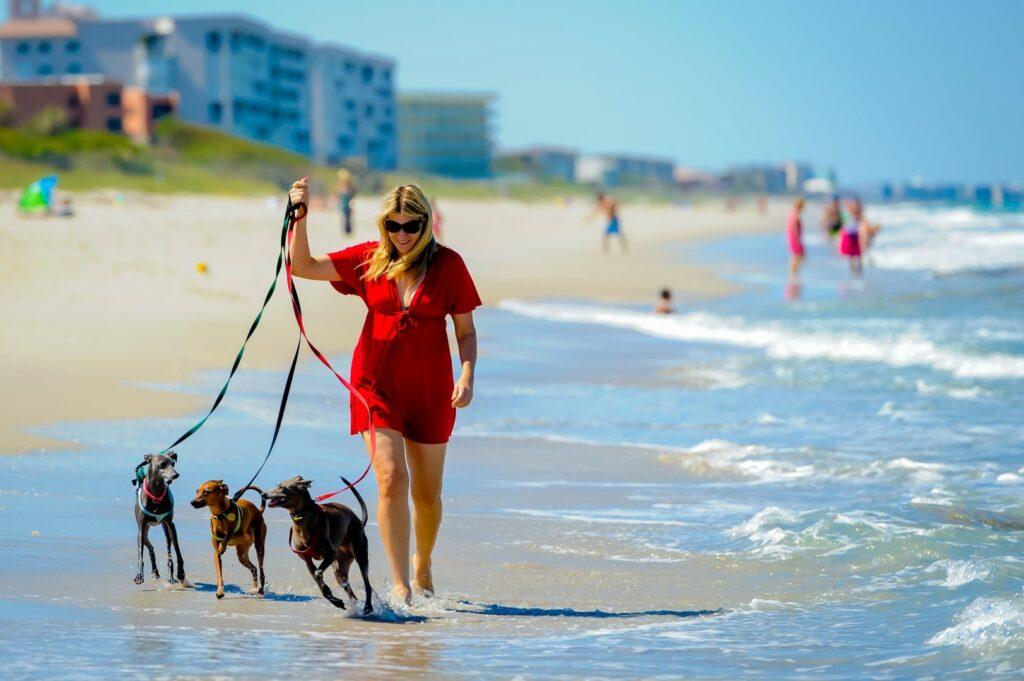 Canover Beach Park dog-friendly florida's space c oast