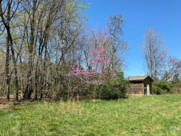 the Daniel Stowe Botanical Garden Monica Mattioli
